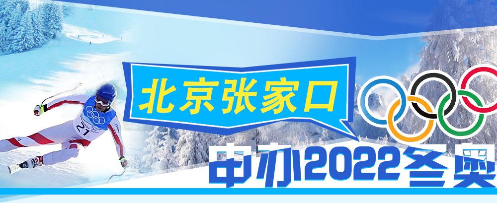 小调查 1.您怎么看北京张家口联合申办奥运会?