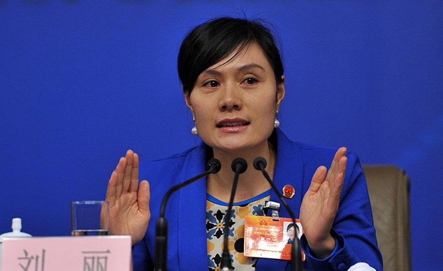 赵本山参加两会_2013年全国两会-中华网新闻